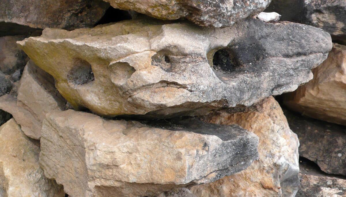 Piedra 20398, photography, 2013