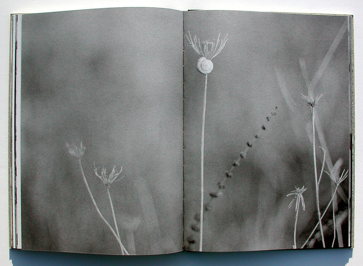 Libro de fantasmas/Book of ghosts, page 70+71 of 100 pages, 29.7x43cm, 2006