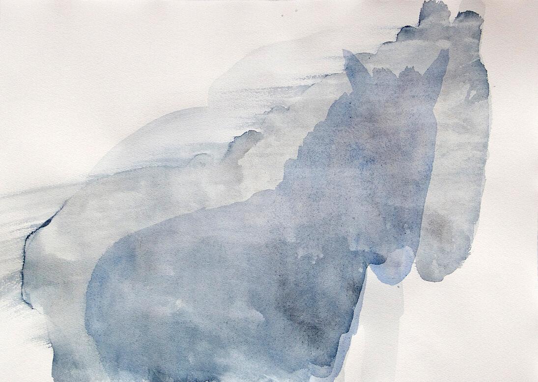 untitled (vague horse), 32.5 x 45.5 cm, watercolour, 2008