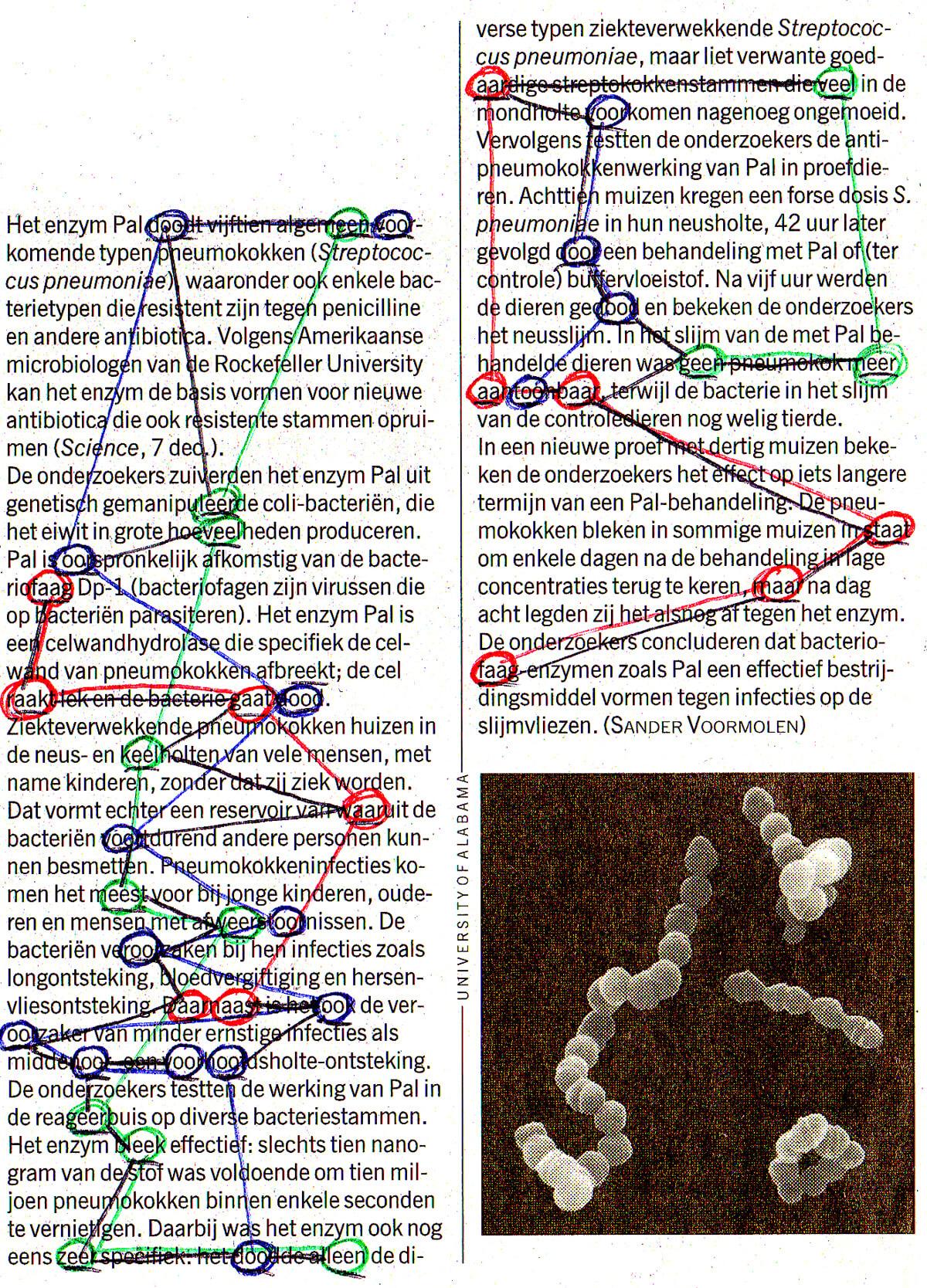 Genetic Choir, Het enzym Pal, original 16 x 11 cm, projection, 2013