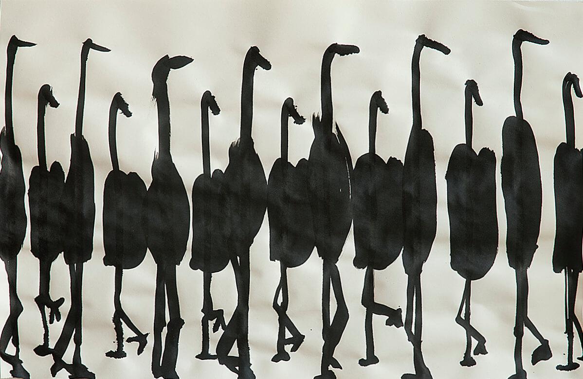 untitled (ostriches), 32 x 49,5 cm, 2016